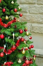 professional christmas trees christmas lights decoration