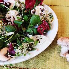 cuisiner les feuilles de betteraves rouges recette diététique salade de betteraves rouges radis chou