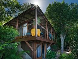 teahouse treehouse photos mooncottage