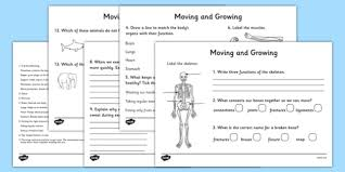 moving and growing worksheet the human body growth and
