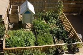 self sustaining garden a self sufficient garden skillshare projects