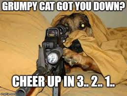 Feeling Down Meme - sniper dog memes imgflip