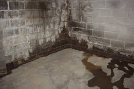 why is my basement floor wet basements ideas