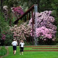 Boylston Botanical Garden Bloom In Massachusetts Gardens Is Happening Now