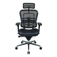 Leather Office Chair Front Eurotech Ergohuman Mesh Office Chair With Leather Seat And