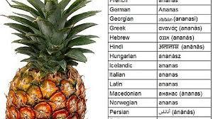 Ananas Pineapple Meme - it s shit like this english imgur