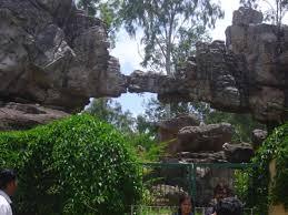 Rock Garden Restaurant Rock Garden At Tirumala Tirupati Picture Of Rock Garden