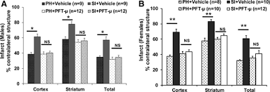 l islation si e auto b inhibition of mitochondrial p53 abolishes the detrimental effects of