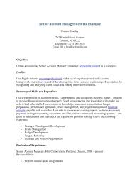 Resume Sample For Account Manager by Resume Account Manager Resume Samples