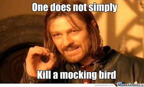 To Kill A Mockingbird Meme - after reading to kill a mocking bird by nachocheez meme center