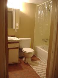 Bathroom Decorating Ideas For Apartments by Download Apartment Bathroom Colors Gen4congress Com