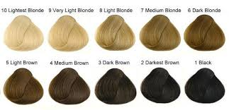 how to lighten dark brown hair to light brown from black to blonde how to lighten your dark tresses at home