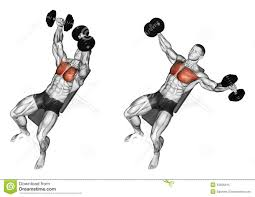 exercising incline bench two arm dumbbell row stock photo