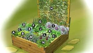 Garden Bed Layout Raised Vegetable Garden Beds Layout Image Of Raised Bed Vegetable