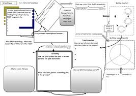 dna technology revision worksheet for aqa a2 by sian jones