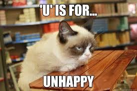 Unhappy Meme - u is for unhappy grumpy cat lunch quickmeme