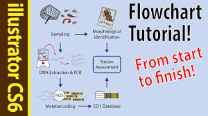 indesign tutorials for beginners cs6 illustrator cs6 tutorial flowcharts for beginners poster how to