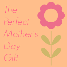 i got the perfect mother u0027s day gift pick any two