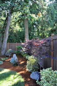 Tree Ideas For Backyard Best 25 Shady Tree Ideas On Pinterest Plants That Love Shade
