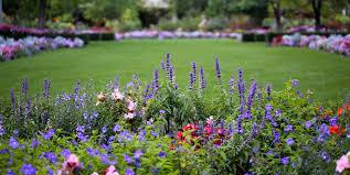 how to start a flower garden 3 steps for beginners garden design