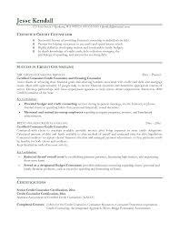 Sample Mental Health Counselor Resume Vocational Rehabilitation Counselor Resume Resume For Your Job