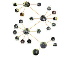 gorilla family tree dian fossey