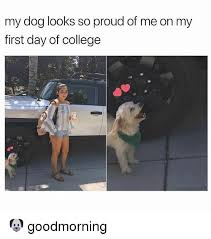 First Day Of College Meme - my dog looks so proud of me on my first day of college