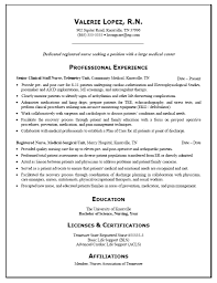 Best Resume Objective Quotes by Resume Template Objective Summary Examples Builder Intended For