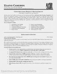 Interior Design Resume Templates Examples Of Resumes 81 Amazing Us Resume Format Style U201a Template