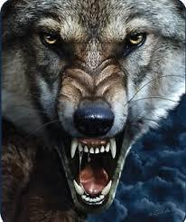 big bad wolf faux fur mink blanket blanket by