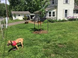 this old fixer upper part 3 garden and landscaping dan nix