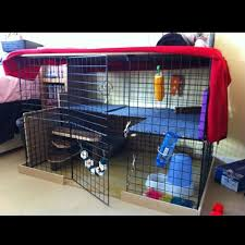 setting up an apartment for rabbits google search bunny cages