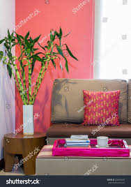 modern living room decorated sofa vase stock photo 204556534