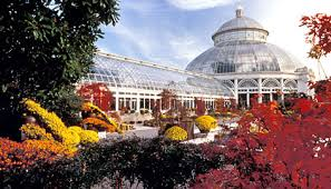 Ny Botanic Gardens Most Beautiful Park In The World The New York Botanical Garden