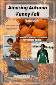 Autumn Memes - amusing autumn memes plus friday frivolity fall memes memes and