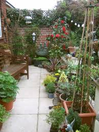 plants for patio interior home design