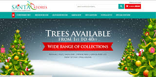 buying trees in india