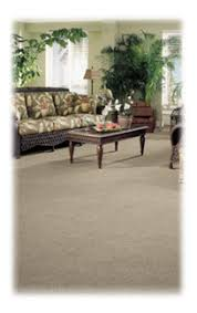 Area Rug Cleaning Boston Boston Area Quality Carpet Cleaning Water Damage Restoration