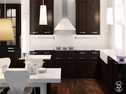 Modern Euro Tech Style Ikea Kitchens Affordable Kitchen Cabinets Sideboards Ikea Hemnes Glass Door Cabinet Black Brown
