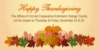cornell cooperative extension beef