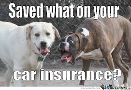 Insurance Meme - saved what on your car insurance by ben meme center