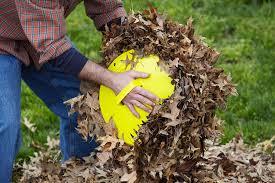 amazon com gardex leaf scoops garden rakes garden u0026 outdoor