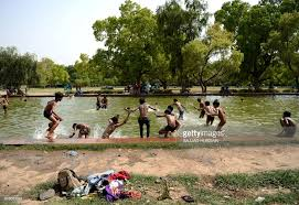Decorative Trees In India Indian Children Jump Into A Decorative Pool In Gardens Surrounding