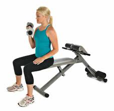 Bench Abs Workout Bench Oblique Bench Best Sit Up Bench For Killer Abs Buyers