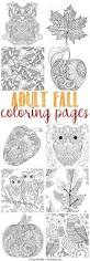 creative coloring books 25 best fall coloring pages ideas on pinterest pumpkin coloring