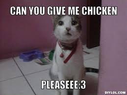Cat Memes Generator - scared cat meme generator info