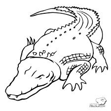 imagenes animales acuaticos para colorear animales acuaticos para colorear opticanovosti 62bf99527d71