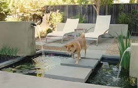 Concrete Backyard Ideas Nice Small Concrete Backyard Ideas 8 Backyard Ideas To Delight