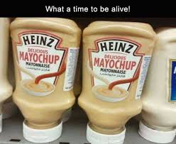 Mayonnaise Meme - 29 funny picture dump funny memes daily lol pics