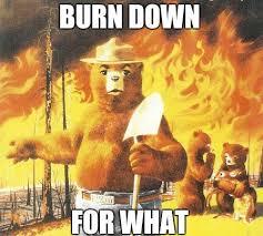 Smokey The Bear Meme Generator - friendships instamour